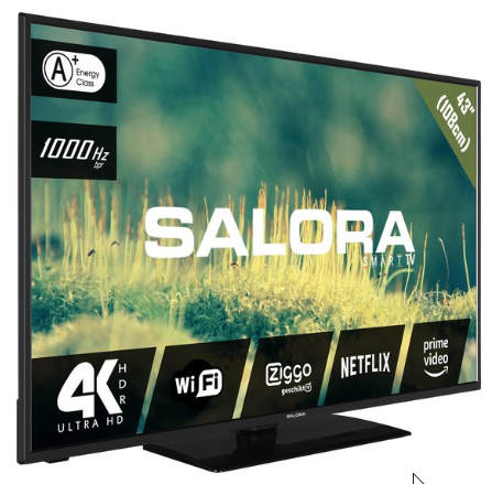 Salora 2204 series 43EUS2204 tv 109,2 cm (43'') 4K Ultra HD Smart TV Wi-Fi Zwart